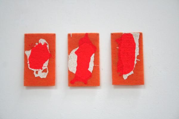 Colour as Animal: Vermillion, 2012, scourers and acrylic paint